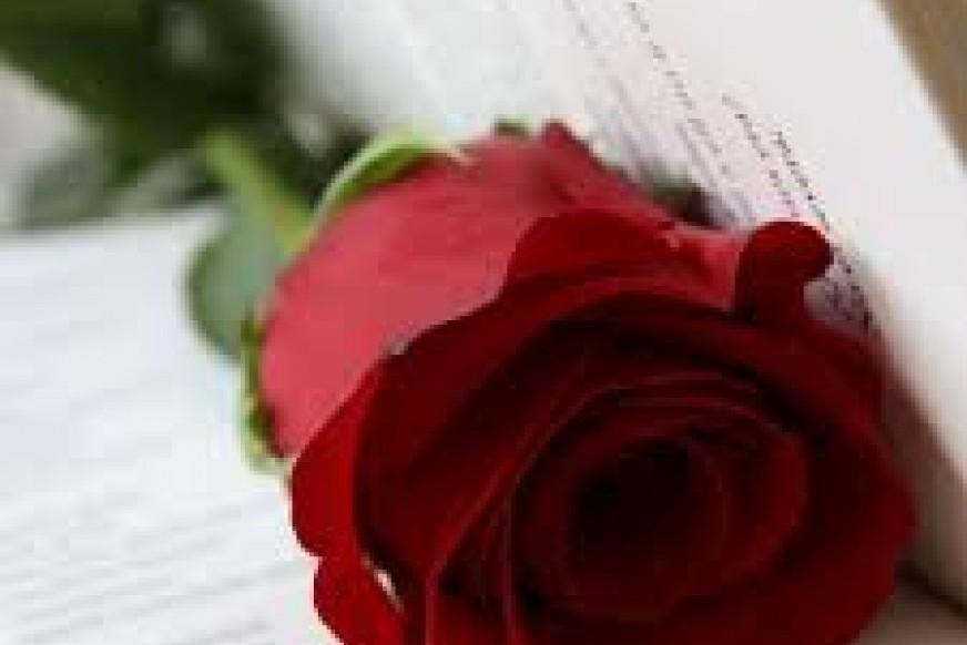 Sant Jordi, día de libros y rosas