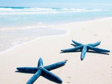 La Goleta - Hotel de Mar os desea feliz Navidad